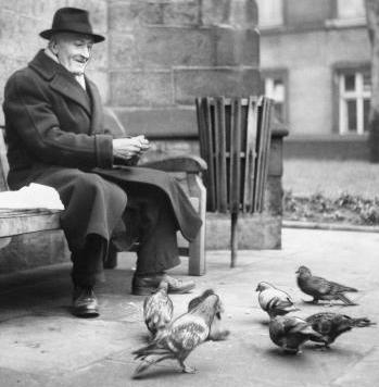 A Walk in the Park - Feeding Pigeons
